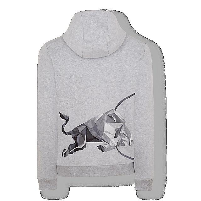 Athletes Shard Zip Hoodie (ATH19921): Red Bull Athletes Collection athletes-shard-zip-hoodie (image/jpeg)