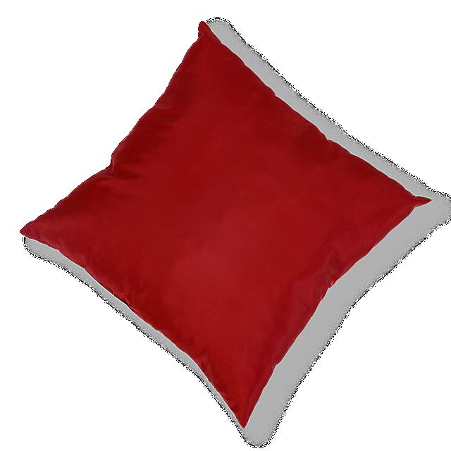 ECS Bull Cushion (ECS18045): EC Red Bull Salzburg ecs-bull-cushion (image/jpeg)