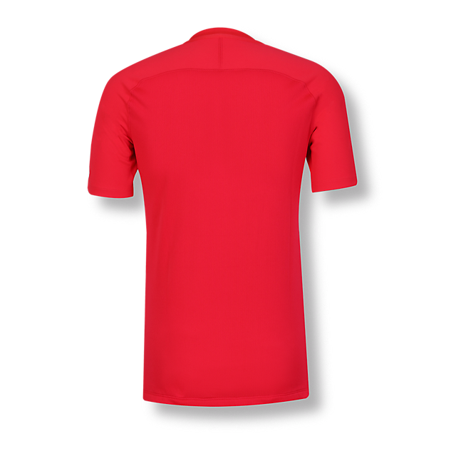 RBS Training T-Shirt (RBS18016): FC Red Bull Salzburg rbs-training-t-shirt (image/jpeg)