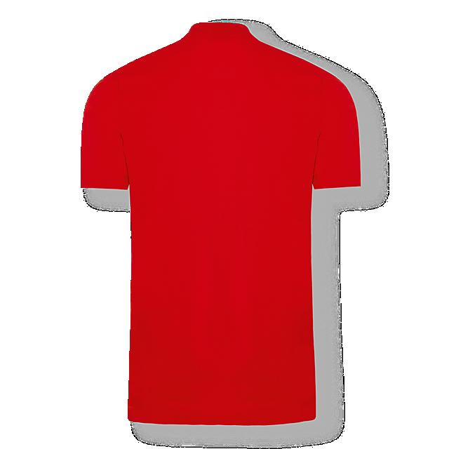 RBS Player Polo Shirt (RBS19029): FC Red Bull Salzburg rbs-player-polo-shirt (image/jpeg)